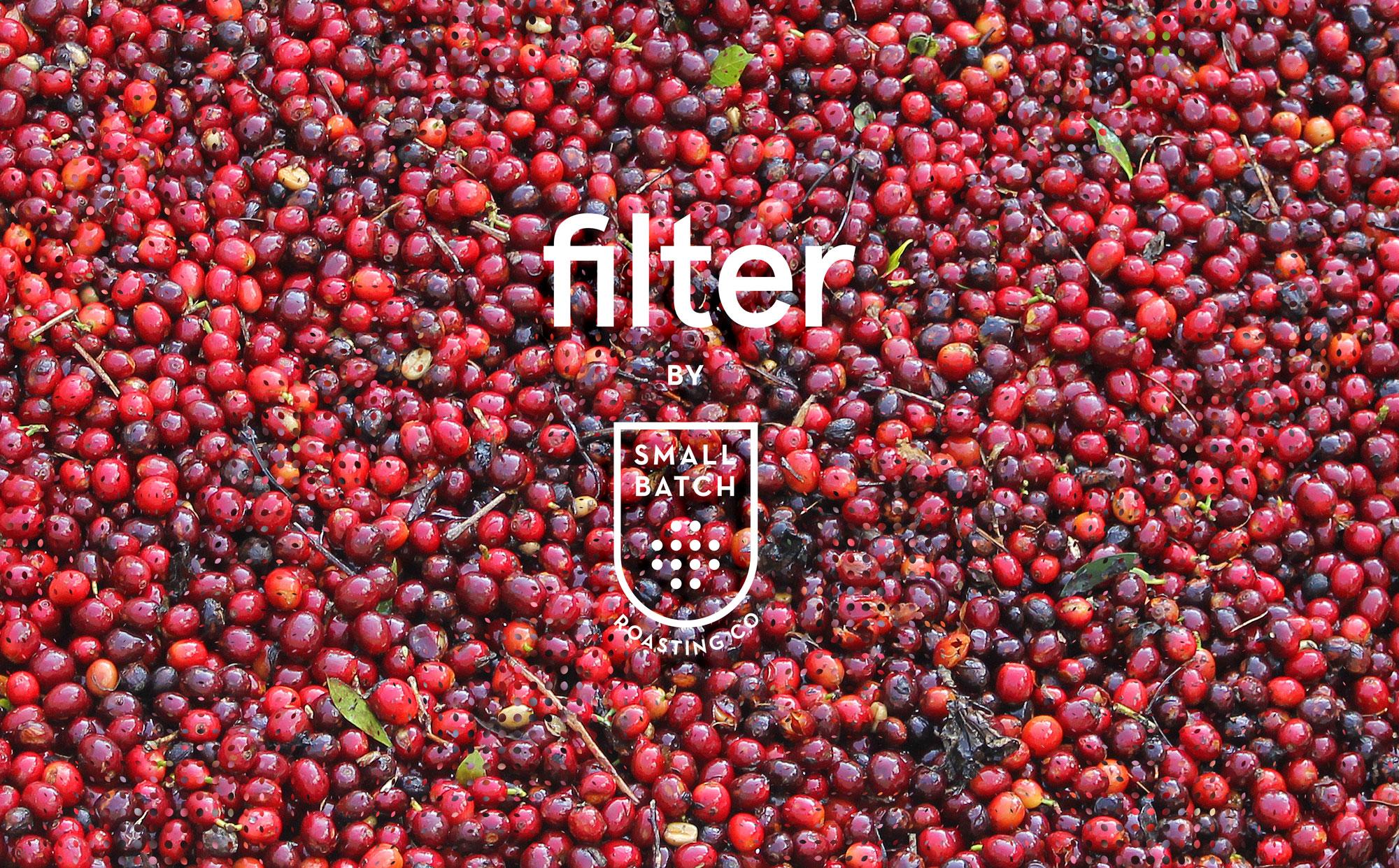 Filter10