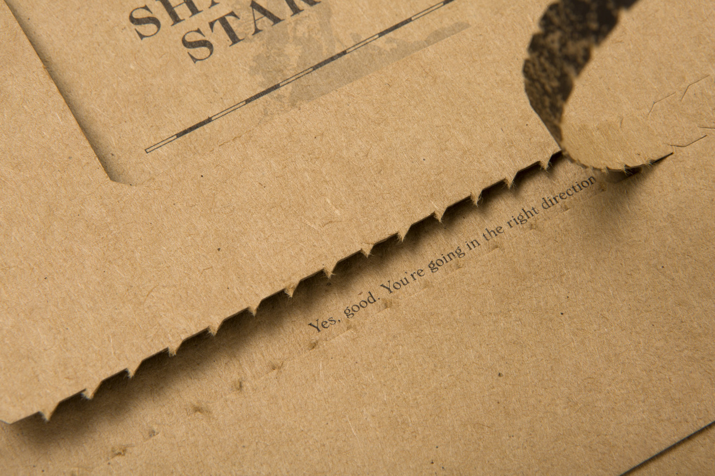 Custom packaging for Shantanu Starick on Buffalo Board 4