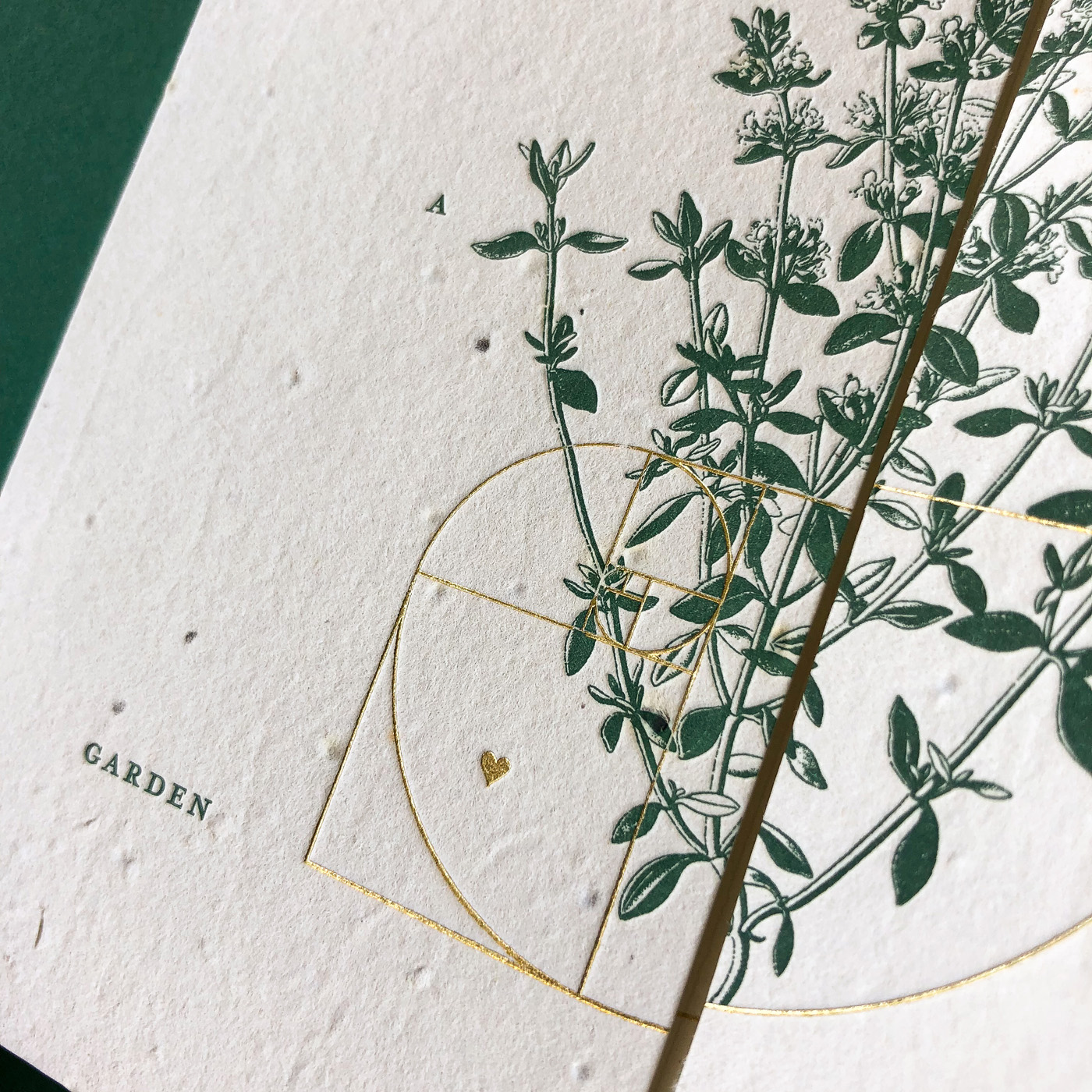 Letterpress and gold foil invitations designed for Cassy and Ben on handmade seed paper 2