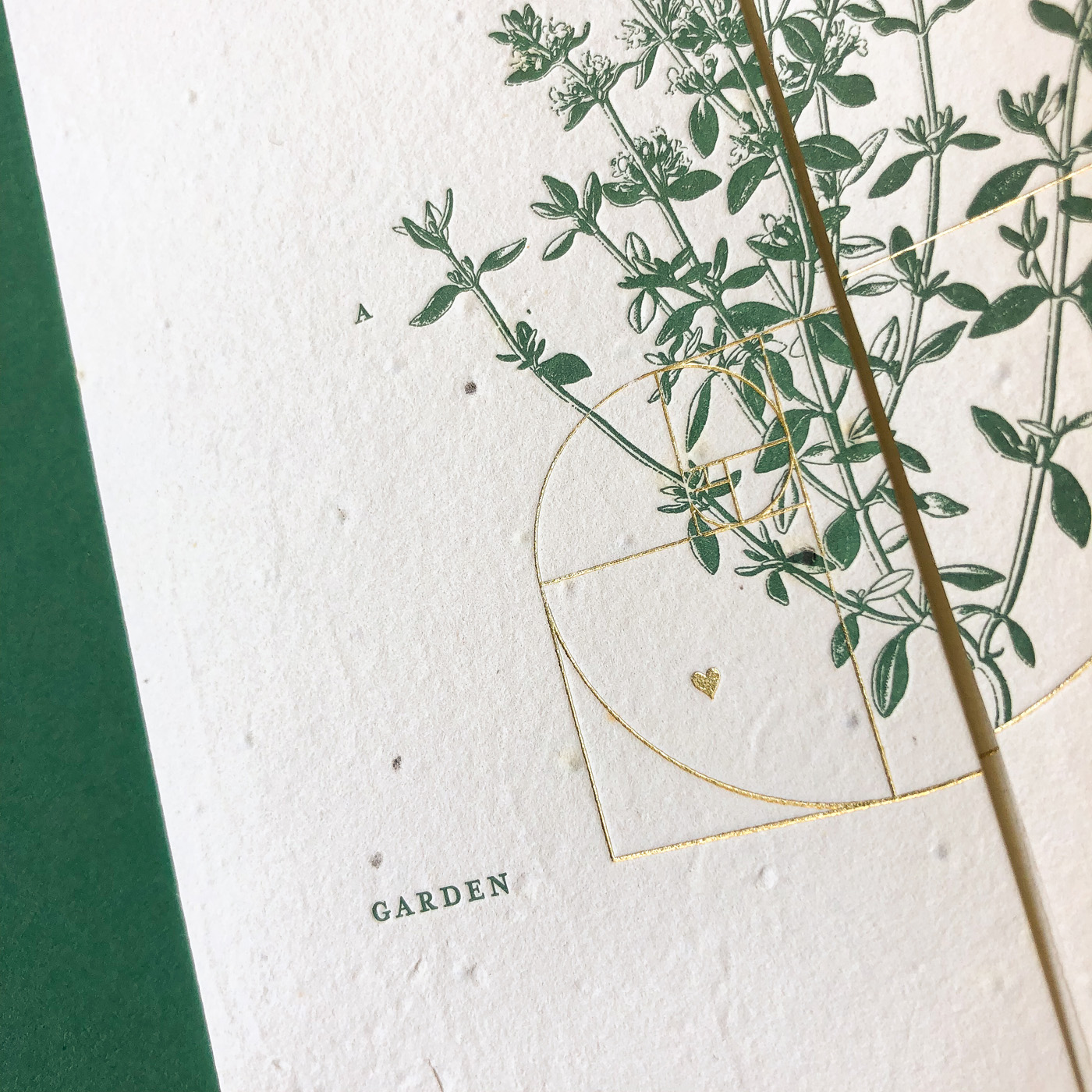 Letterpress and gold foil invitations designed for Cassy and Ben on thyme seed paper