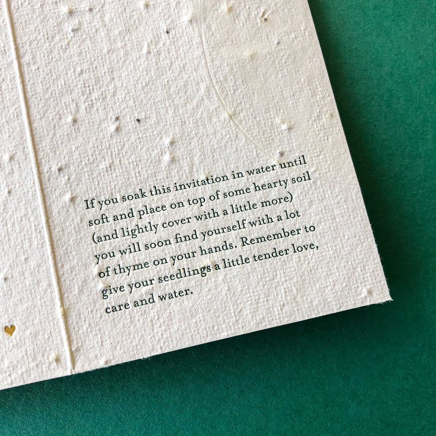 Unique letterpress and gold foil invitations designed for Cassy and Ben on handmade plantable seed paper