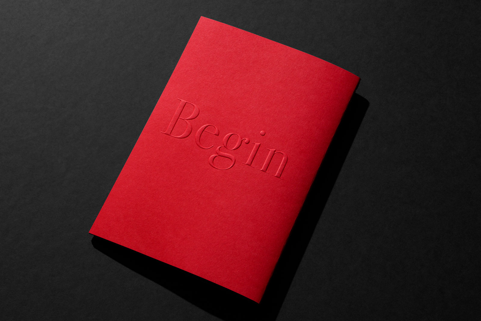 Embossed Brand Book for PAN on Colorplan Bright Red and Colorplan Mist and Colorplan Pristine White 1